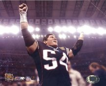 Tedy Bruschi Super Bowl 38 LIMITED STOCK 8x10 Photo