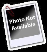 Phoenix Suns Team Composite 8X10 Photo LIMITED STOCK