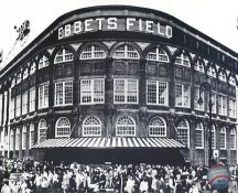 Ebbets Field Brooklyn Dodgers LIMITED STOCK 8X10 Photo