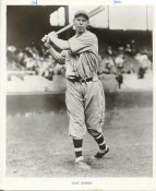 Babe Herman Brooklyn Dodgers Original Press Photo / Wire Photo 8x10