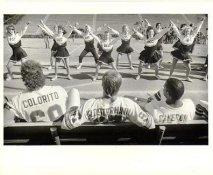 Tony Colorito, Bruce Klosterman and Cameron watch The Orange Coast College Cheerleadres 1987 Denver Broncos Original Press Photo / Wire Photo w/ Photographer Stamp on Back 8x10