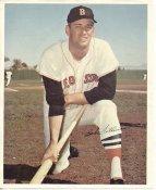 Bob Tillman Boston Red Sox Slight Crease SUPER SALE 8x10 Photo