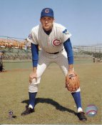 Don Kessinger Chicago Cubs LIMITED STOCK SATIN 8X10 Photo