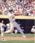 Mark McGwire Oakland Athletics SUPER SALE Barry Colla 8X10 High Gloss Card Stock
