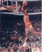 Michael Jordan Chicago Bulls LIMITED STOCK 8X10 Photo