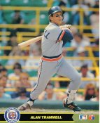 Alan Trammell Detriot Tigers Glossy Card Stock LIMITED STOCK 8X10 Photo