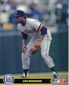Lou Whitaker Detriot Tigers Glossy Card Stock LIMITED STOCK 8X10 Photo