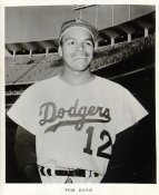 Tom Davis Original Team Issue Photo 8x10 LA Dodgers