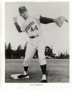 Dick Tracewski Original Team Issue Photo 8x10 LA Dodgers
