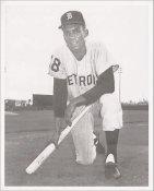Billy Burton Detroit Tigers LIMITED STOCK 8X10 Photo