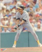Walt Weiss Oakland Athletics Glossy Card Stock LIMITED STOCK 8X10 Photo