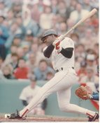 Don Baylor Boston Red Sox LIMITED STOCK 8X10 Photo