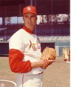 Steve Carlton St Louis Cardinals Slight Crease LIMITED STOCK 8X10 Photo