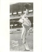 Dizzy Dean St Louis Cardinals LIMITED STOCK 8X10 Photo