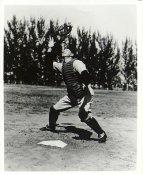 Bill Dickey New York Yankees LIMITED STOCK 8X10 Photo
