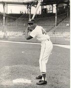 Curt Flood St. Louis Cardinals LIMITED STOCK 8X10 Photo