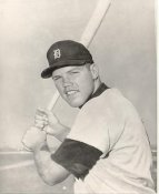 Bill Freehan Detroit Tigers LIMITED STOCK 8X10 Photo