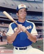 Dave Johnson Atlanta Braves LIMITED STOCK 8X10 Photo