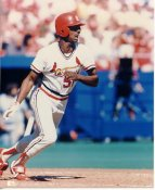 Willie McGee St Louis Cardinals LIMITED STOCK 8X10 Photo