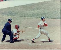 Stan Musial St Louis Cardinals LIMITED STOCK 8X10 Photo