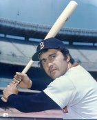 Rico Petrocelli Boston Red Sox LIMITED STOCK 8X10 Photo