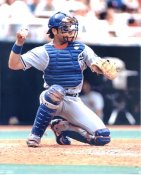 Mike Piazza LA Dodgers LIMITED STOCK 8X10 Photo