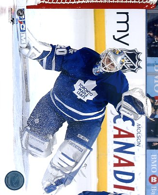 Ed Belfour Toronto Maple Leafs LIMITED STOCK 8x10 Photo