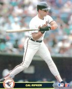 Cal Ripken Jr Baltimore Orioles LIMITED STOCK 8X10 Photo