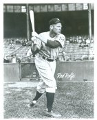 Red Rolfe New York Yankees LIMITED STOCK 8X10 Photo