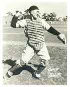 Birdie Tebbetts (George Tebbetts) Detroit Tigers LIMITED STOCK 8X10 Photo