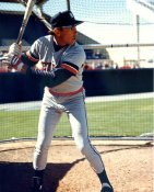 Alan Trammell Detroit Tigers LIMITED STOCK 8X10 Photo