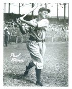 Paul Waner Pittsburgh Pirates LIMITED STOCK 8X10 Photo