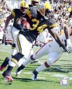 Rashard Mendenhall Pittsburgh Steelers LIMITED STOCK 8x10 Photo