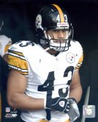 Troy Polamalu Pittsburgh Steelers LIMITED STOCK 8x10 Photo