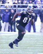 Anquan Boldin Baltimore Ravens LIMITED STOCK SATIN 8X10 Photo