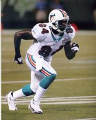 Chris Chambers Miami Dolphins LIMITED STOCK 8X10 Photo