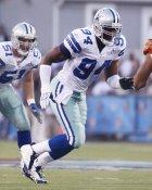 Demarcus Ware Dallas Cowboys LIMITED STOCK 8X10 Photo