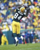 Javon Walker Green Bay Packers LIMITED STOCK SATIN 8X10 Photo