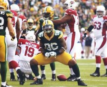 Mike Neal Green Bay Packers LIMITED STOCK 8X10 Photo
