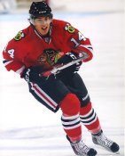 Brandon Pirri Chicago Blackhawks LIMITED STOCK 8x10 Photos