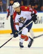 Alex Petrovic Florida Panthers LIMITED STOCK 8x10 Photos