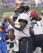 David Garrard Jacksonville Jaguars LIMITED STOCK 8x10 Photo