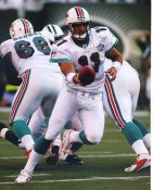 Gus Frerotte Miami Dolphins LIMITED STOCK 8X10 Photo