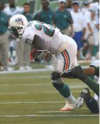 Ronnie Brown Miami Dolphins LIMITED STOCK 8X10 Photo