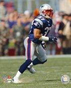 Rodney Harrison New England Patriots LIMITED STOCK 8X10 Photo