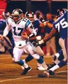 Jake Delhomme Carolina Panthers LIMITED STOCK 8X10 Photo