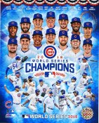 Chicago Cubs 2016 World Series Champions Composite SATIN 8X10 Photo