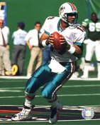 Dan Marino Miami Dolphin LIMITED STOCK 8X10 Photo