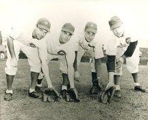 Stan Hack, Lennie Merullo, Don Johnson & Phil Cavarretta Chicago Cubs LIMITED STOCK 8X10 Photo