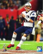 Tom Brady New England Patriots Super Bowl 51 SATIN 8x10 Photo